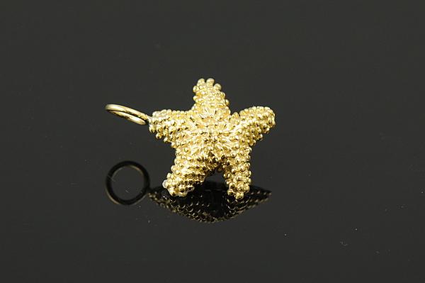 Starfish -0